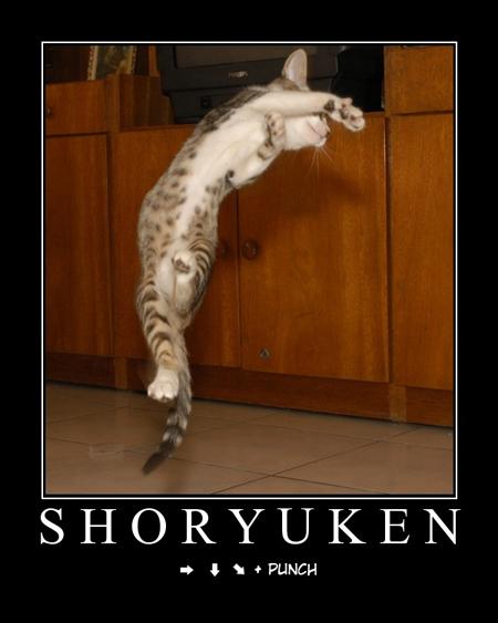 shoryuken!